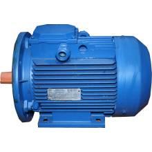 Електродвигун 2,2кВт 1000 лапа (АИР100L6) 1081