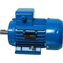Електродвигун 3 кВт 3000 об. (АИР 90L2) л. 1081