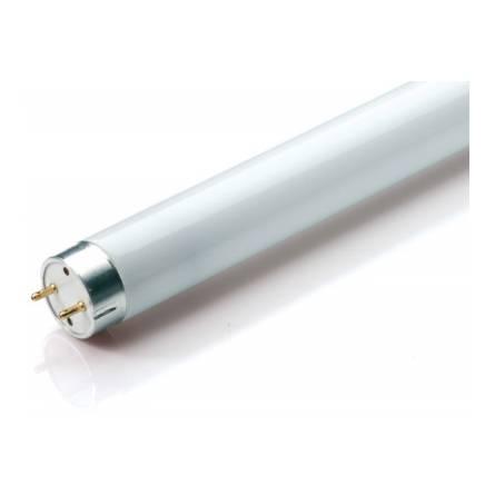 Лампа ЛД 20